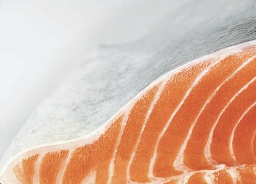 King Salmon Fillet - Photo Courtesy of Ora